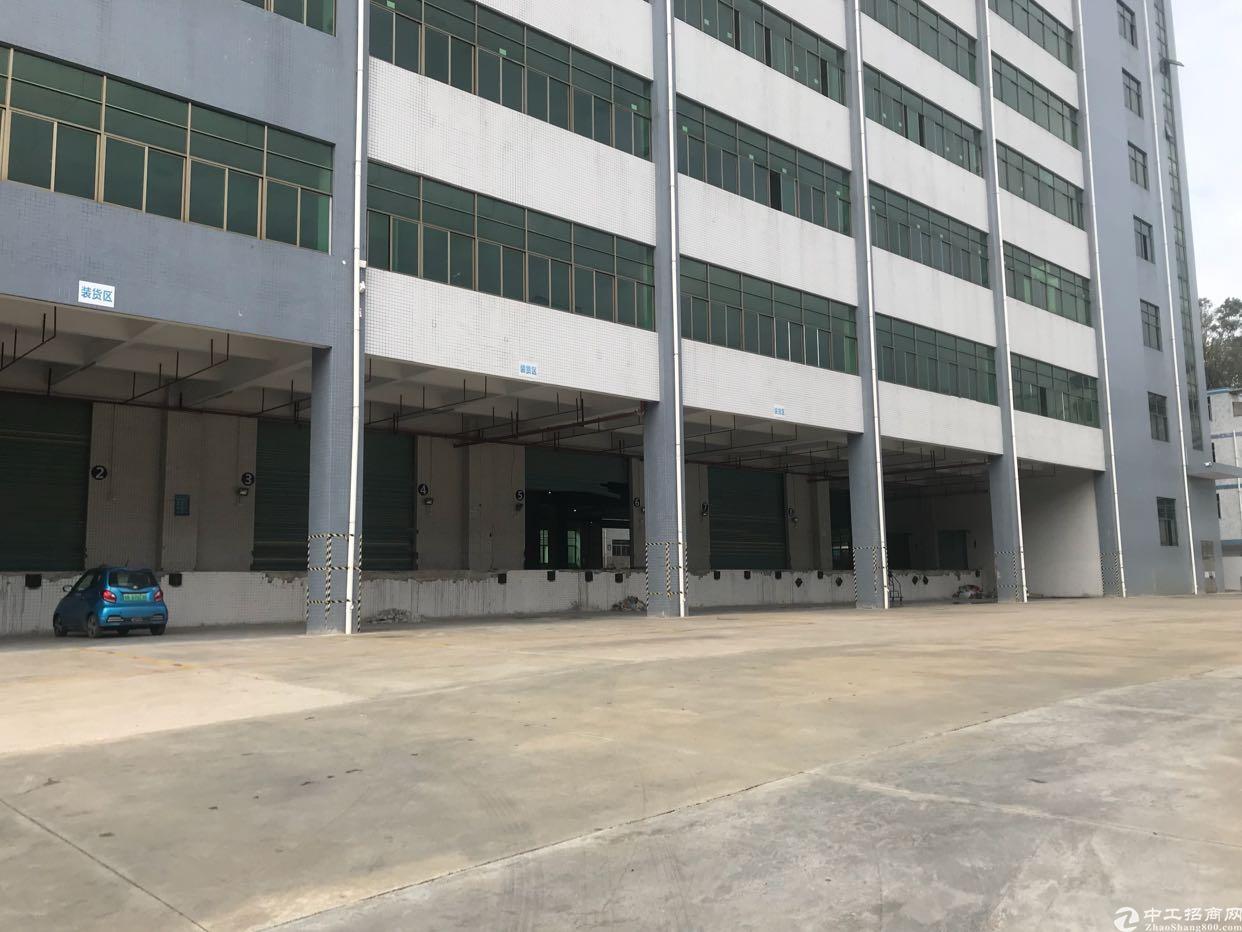 坂田红本单层5000平方带消防喷淋厂房大小面积招租