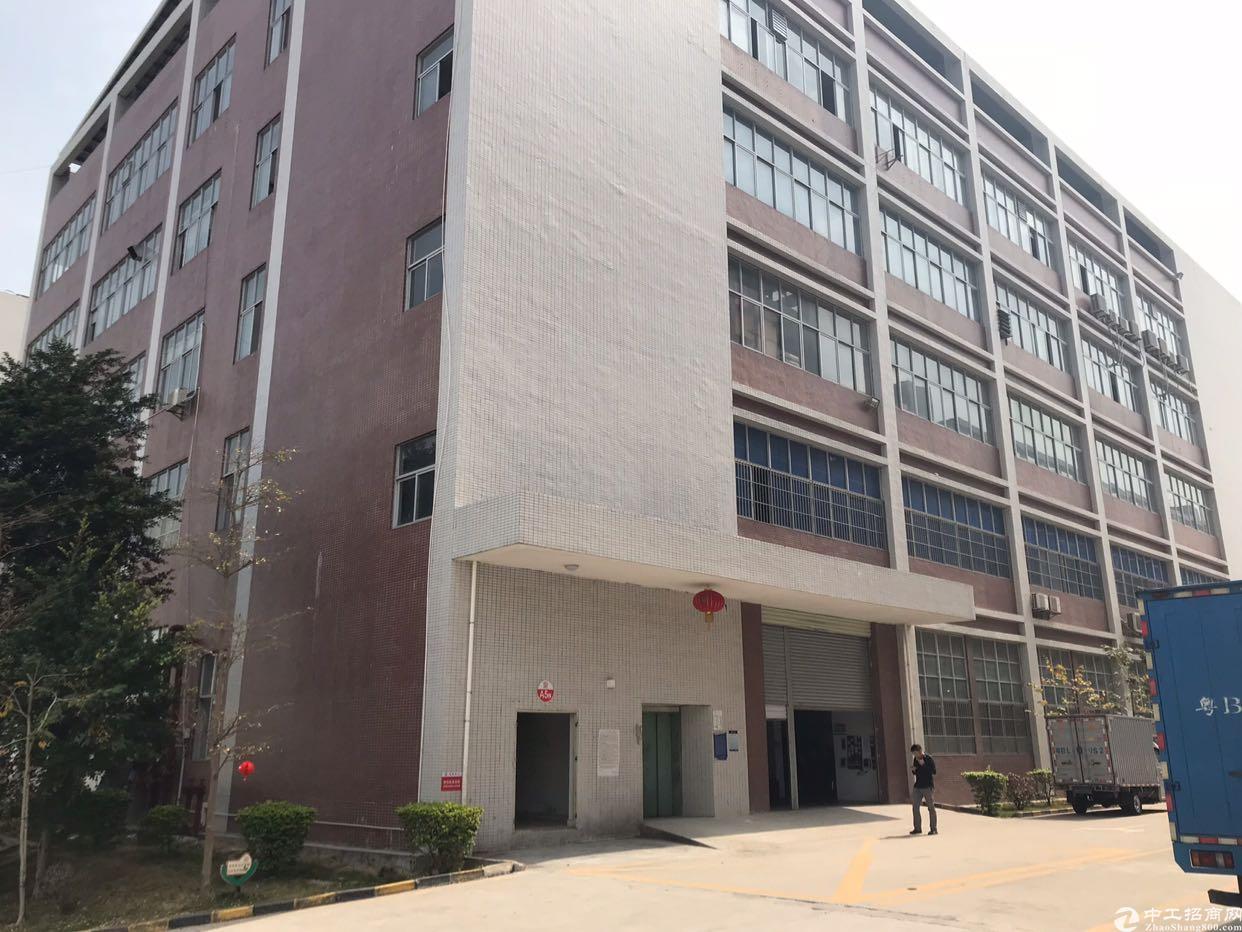 石岩带红本楼上2500平方带装修厂房(出租,两层共5000平