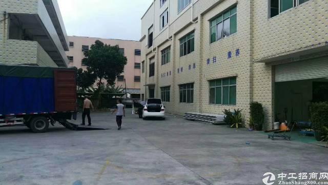 平湖新木原房东带装修标准厂房800平出租