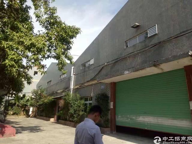 公明滴水9米高独院钢构厂房2800平25元租