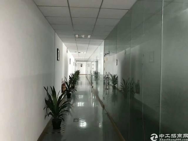 平湖辅城坳新出原房东厂房一楼整层1550平方可分租-图2