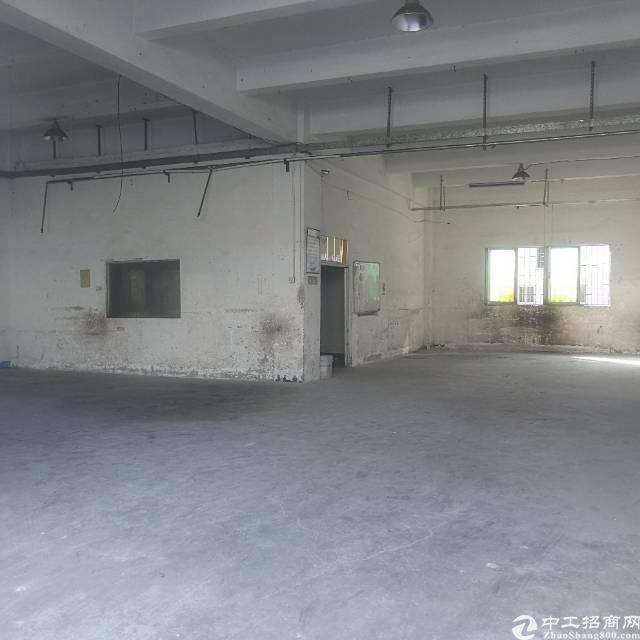平湖新出一楼500平米厂房招租,独门独院,停车进出货物方便!