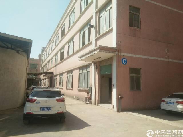 靠近深圳原房东,带消防喷淋一楼出租
