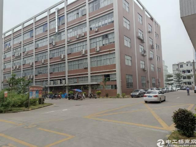 深圳石岩石头仔大型成熟工业园