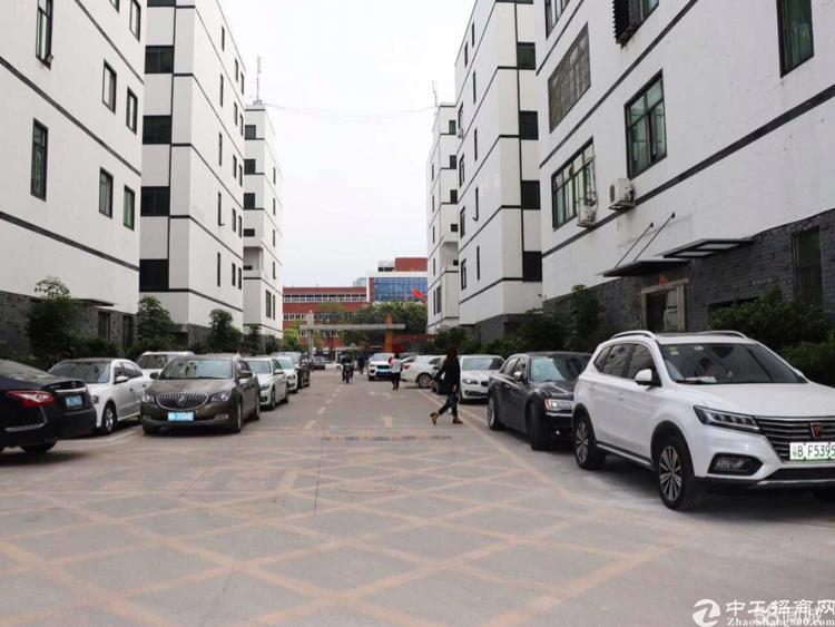 港深国际580平豪华装修办公室出租