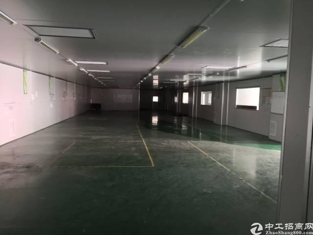 凤岗主干道食品生产及仓库1400平招租