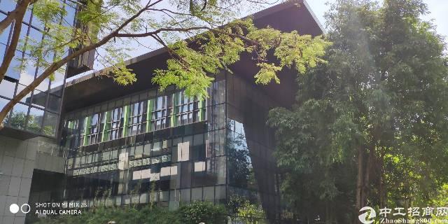 龙岗中心城480平米独栋办公展厅招租