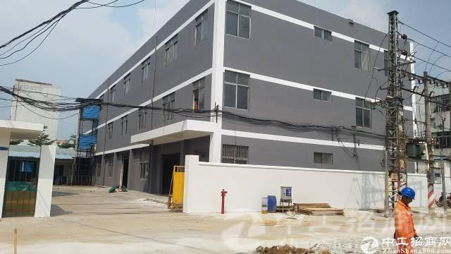 厚街镇新出独院1-3层4800平米、大小可分租
