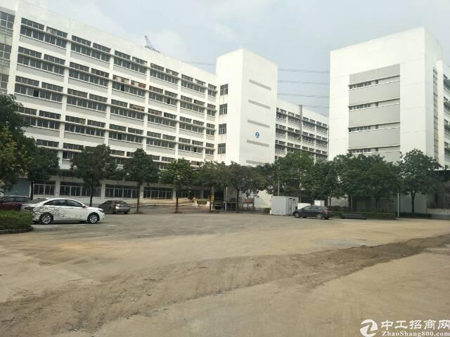 石岩塘头原房东实际面积1800平超靓厂房出租!