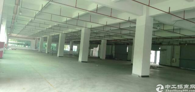 坪地六联新出独院标准厂房5600平