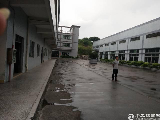 茶山镇原房东单一层5300平米