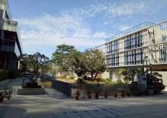 高档写字楼与政府合作的项目