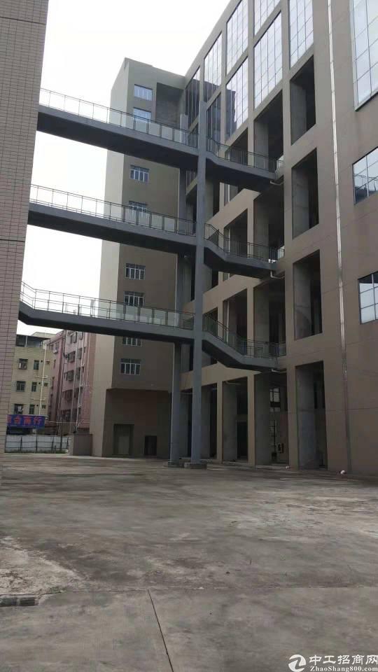 龙岗原房东影视基地35000平招租