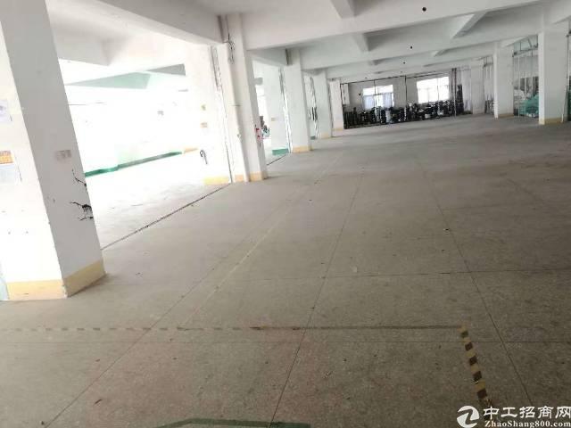 横岗荷坳社区原房东850平方实际面积厂房出租!