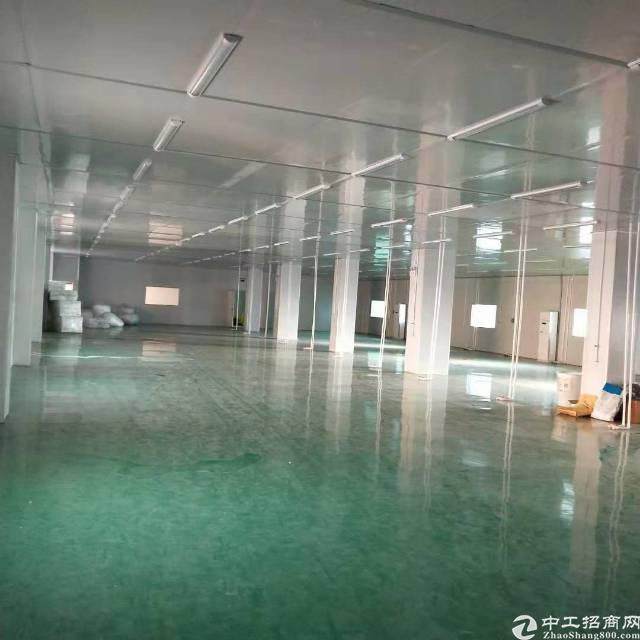 沙井新桥黄埔村洪田工业区3层3600平方独院厂房出租-图5