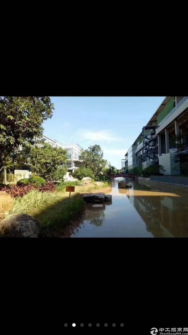 观澜牛湖观湖新城花园一式精装修写字楼20000平方大小80平