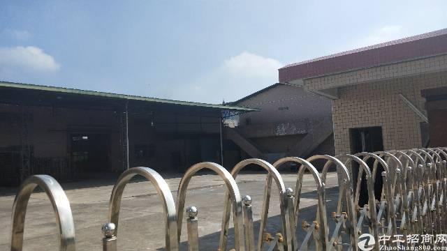 茶山镇2000平厂房