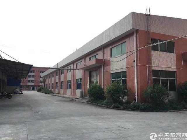 惠州新圩博深高速路口新出独院钢结构厂房10000平带消防喷淋