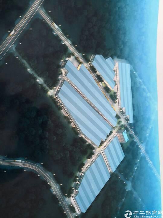 高度15米钢构厂房出租