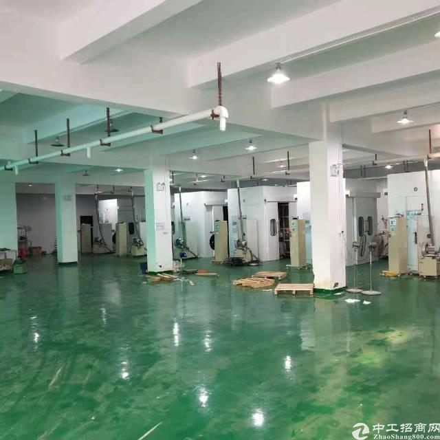 沙井新桥黄埔村洪田工业区3层3600平方独院厂房出租-图2