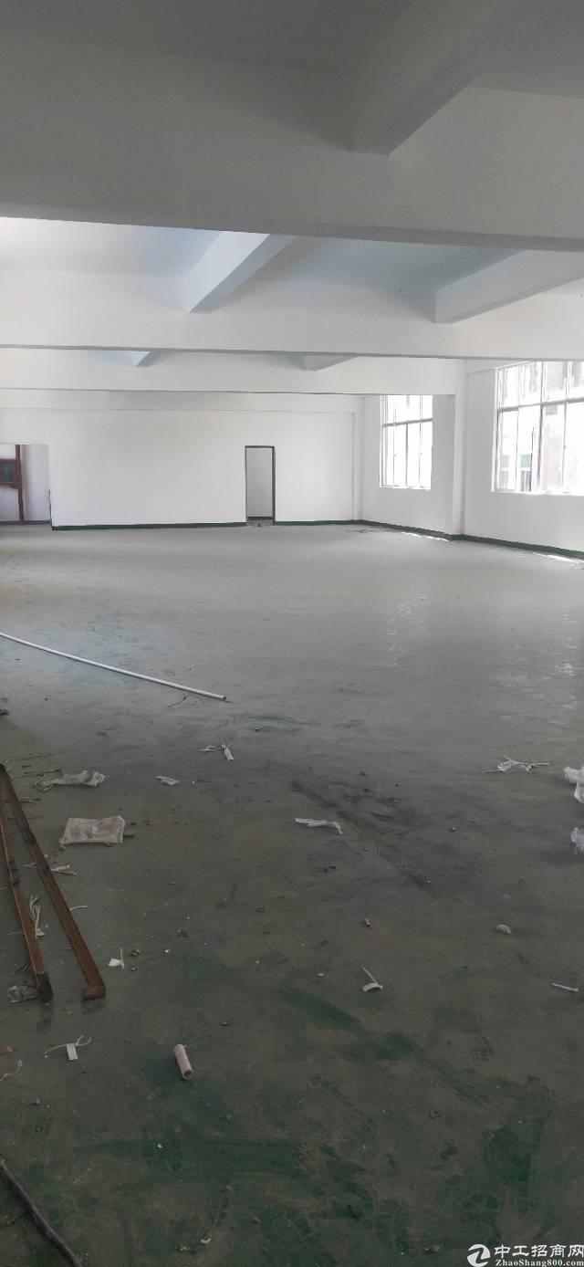 新出平湖山厦工业区原房东3000平精美小独院出租