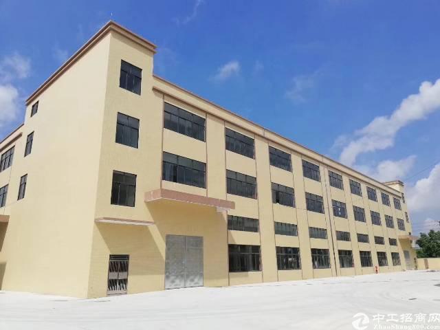 万江新和新装修标准厂房急租3000平方才租13元