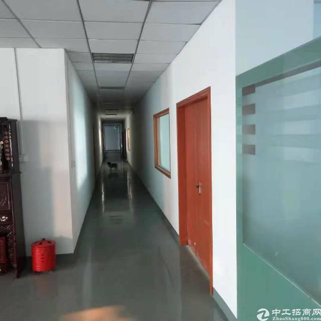 沙井新桥黄埔村洪田工业区3层3600平方独院厂房出租-图3