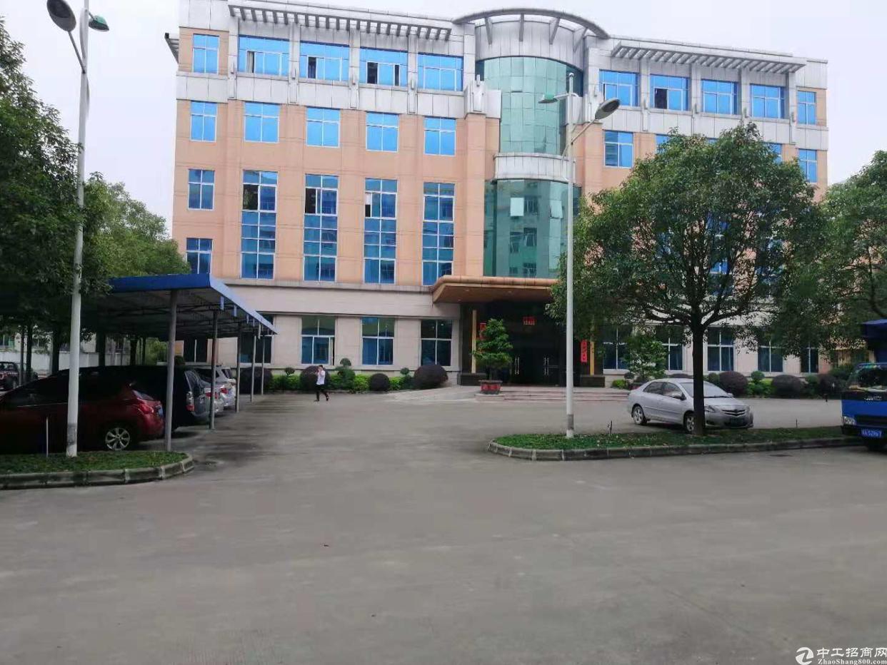 增城区全新独院厂房