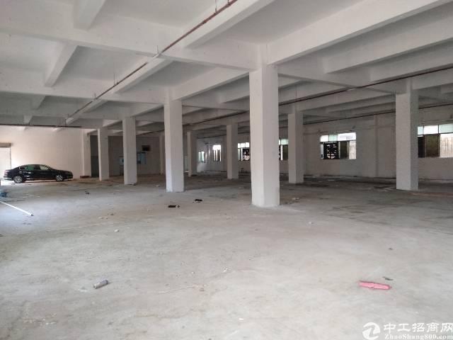 西丽白芒关附近新出独门独院厂房出租带宿舍