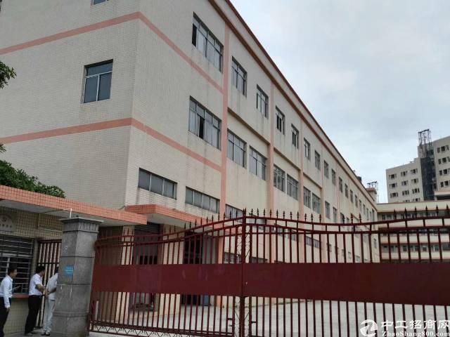 樟木头镇百果洞管理区标准厂房二楼1300平方出租
