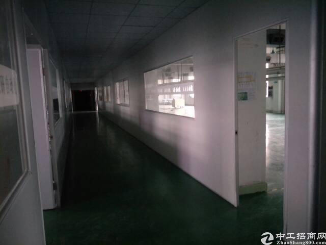 石碣新出工业园区标准厂房三楼