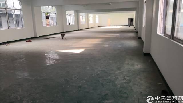 平湖华南城大小面积二三楼厂房招租