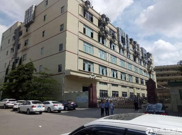 公明田寮15000平方独门独院五层厂房出租-图2