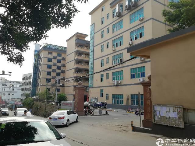 (出租)西乡宝田9380平独院厂房出租一二楼500平米起分租