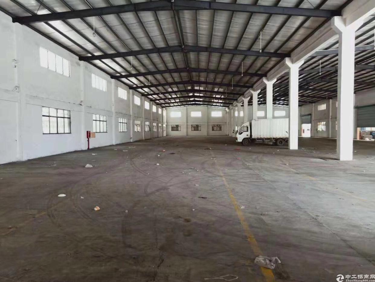 东莞水乡片区单一层钢构厂房出售