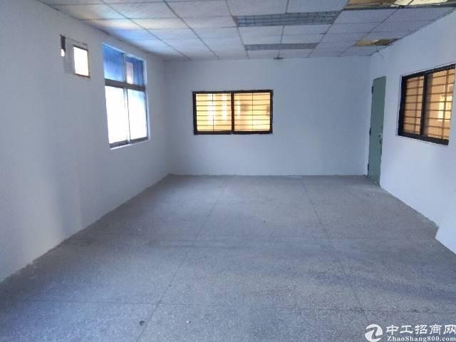 松岗107国道边新出独院大小分租2500平带办公室-图3