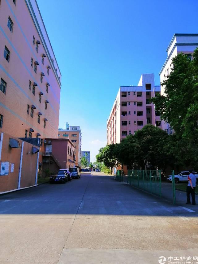 布吉36000平红本独院花园厂房有消防喷淋带宿舍可分租