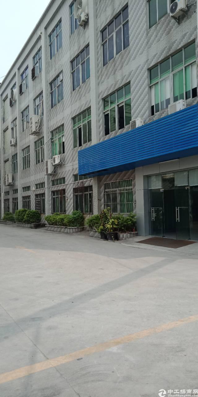 大岭山新塘原房东分租2800平米一楼带装修