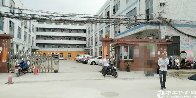 深圳市宝安区松岗潭头1200平带精装修办公室厂房