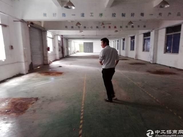 东莞市凤岗镇适合生产线的厂房