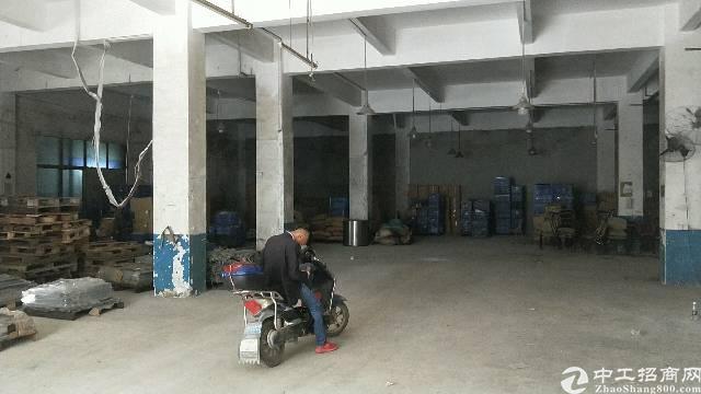 沙井新沙路大型工业园一楼500平方厂房出租-图2