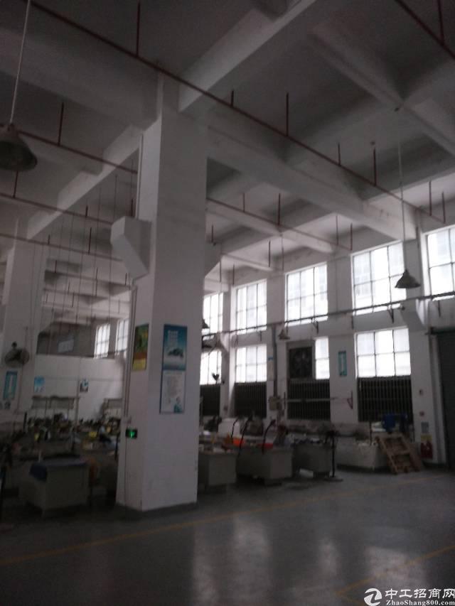 西乡黄田107国道旁精装厂房3300平出租-图6