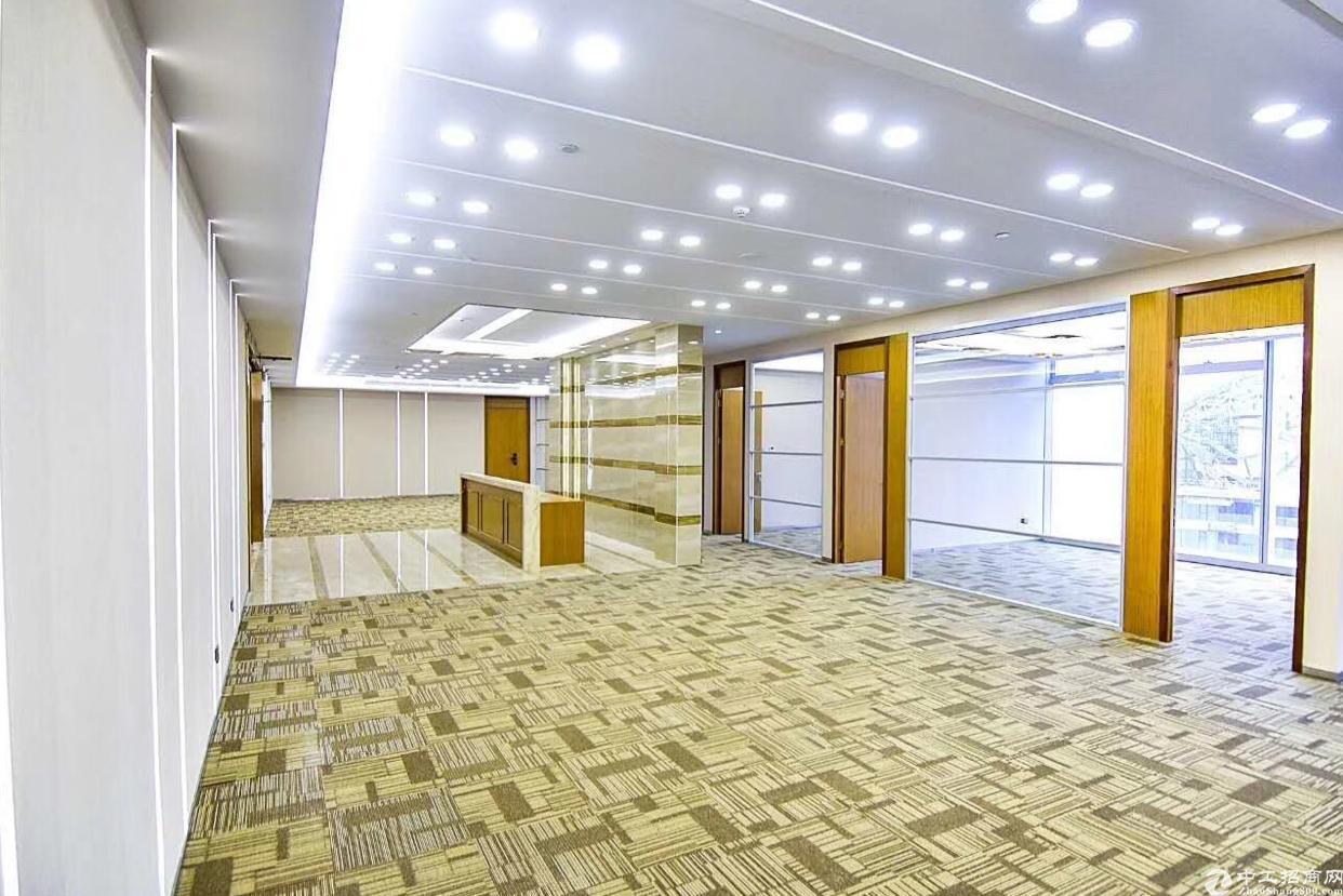 前海自贸区 全新精装写字楼  仅租99元