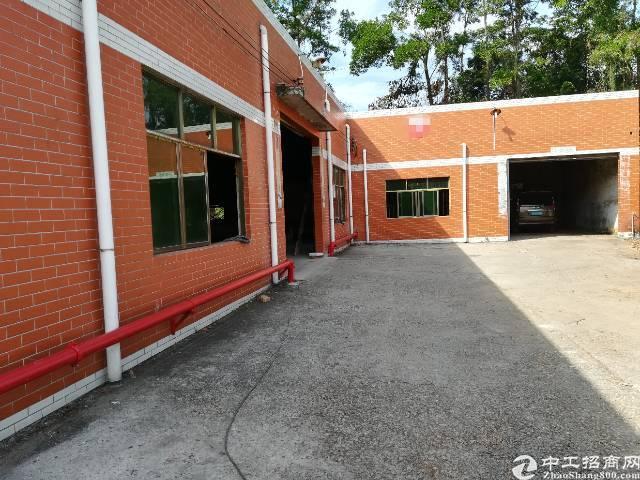 观澜原房东单一层标准钢构800平可做临时仓库