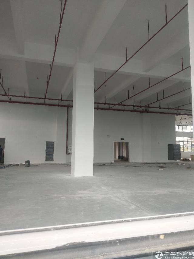 虎门镇新出6200平方米双证齐全厂房出售