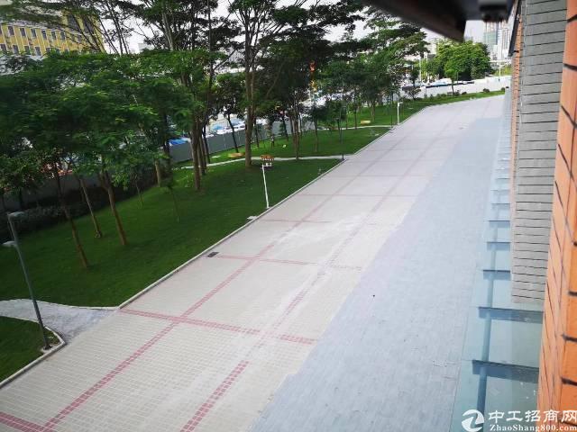 龙华最繁华人流量最大地段新出写字楼436平