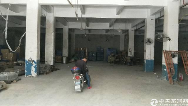 沙井新沙路大型工业园一楼500平方厂房出租