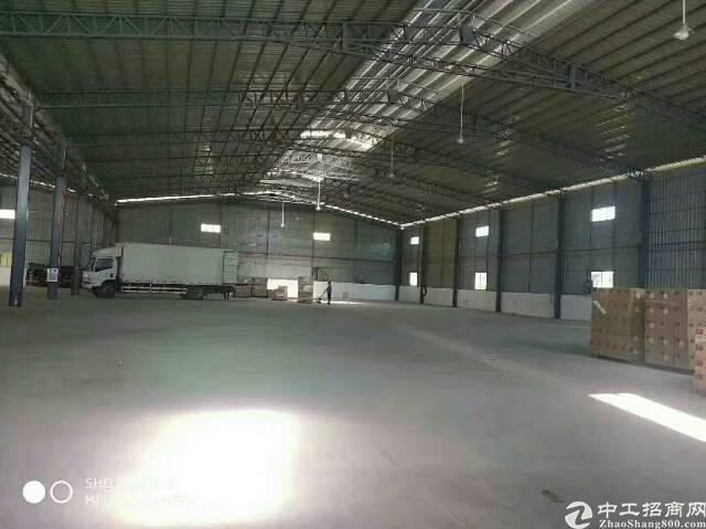 万江原房东全新钢构单一层滴水9米招租