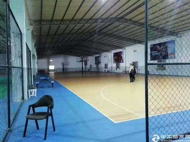 梅林关附近新出原房东运动馆4000平,无转让费