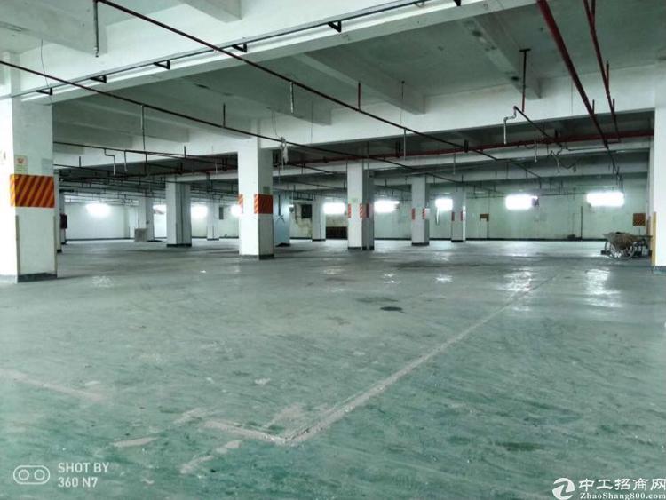 沙井红本独院厂房16800平带装修出租-图5